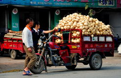 Pengzhou,China: Farmer with Truckload of Di Gua Root Vegetables. Farmers with a motorcycle cart piled high with freshly dug up di gua root vegetables in Pengzhou Stock Photos