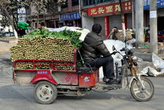 Pengzhou, China:  Farmer with Truckload of Spinach. Farmer sitting on his motorcycle cart filled with freshly picked spinach waiting to unload at a local farm Stock Photos