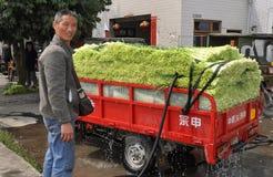 Pengzhou, China: Farmer Washing Green Garlic. Farmer washing a small truckload of freshly harvested green garlic bunches before transporting them to local Royalty Free Stock Photo