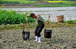 Pengzhou, China: Farmer with Water Buckets Royalty Free Stock Image