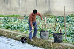Pengzhou, China: Farmer Watering Seedlings Stock Image