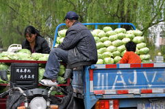 Pengzhou, China: Farmers with Cabbages Royalty Free Stock Photos