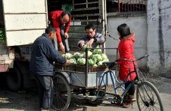 Pengzhou, China: Farmers with Cauliflower Stock Image