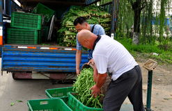 Pengzhou, China: Farmers with Green Beans Stock Photo
