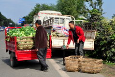 Pengzhou, China: Farmers Unloading Cabbages Royalty Free Stock Photography