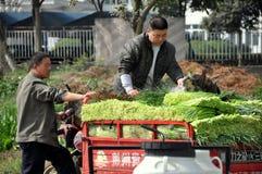 Pengzhou, China: Farmers Washing Garlic Royalty Free Stock Image