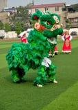 Pengzhou, China: Green Lion Dancer Stock Photos
