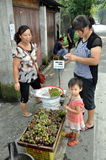 Pengzhou, China: Kaufende frische Trauben Stockfotos