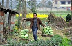 Pengzhou, China: Landwirt-tragende Kohlpflanzen Stockbilder