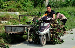 Pengzhou, China: Man on Motorbike with Vines Stock Photography