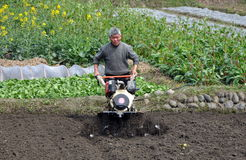 Pengzhou, China: Man Plowing Field Royalty Free Stock Photography