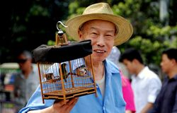 Pengzhou, China: Old Man with  Birdcage Stock Image