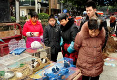 Pengzhou, China: People Looking at Caged Pets. People looking at a display of caged rabbits and guinea pigs being sold as pets by a vendor during the Chinese New Royalty Free Stock Photos