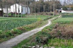 Pengzhou, China: Sichuan Province farms Stock Images