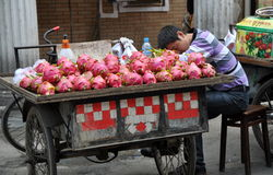Pengzhou, China: Sleeping Fruit Seller Royalty Free Stock Image