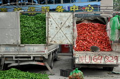 Pengzhou, China: Trucks Filled with Peppers Stock Photo