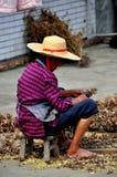 Pengzhou, China: Wman con las plantas medicinales Fotografía de archivo