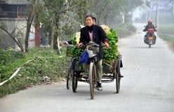 Pengzhou, China: Woman in Bicycle Cart Royalty Free Stock Image