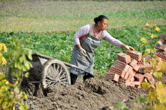 Pengzhou, China: Woman with Bricks Stock Photo
