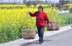 Pengzhou, China: Woman Carrying Wicker Baskets Royalty Free Stock Images
