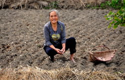 Pengzhou, China: Woman Planting Garlic Royalty Free Stock Image