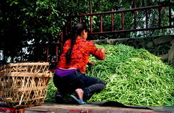 Pengzhou, China: Woman on Truck with Green Beans Royalty Free Stock Photos