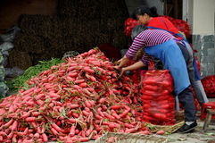 Pengzhou, China: Women Bagging Radishes Stock Photo
