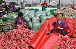 Pengzhou, China: Women Bagging Radishes Royalty Free Stock Photography