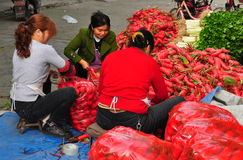 Pengzhou, China: Women Bagging Radishes Stock Photography