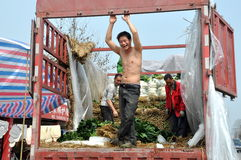 Pengzhou, China: Workers Loading Garlic onto Truck Royalty Free Stock Images