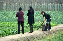 Pengzhou, Chine : Trois femmes dans un domaine de ferme images stock