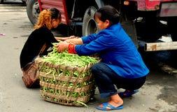 Pengzhou, Chiny: Kobiety Pakuje fasole w kosze Zdjęcia Stock