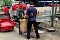 Pengzhou, Cina: Agricoltori con il canestro dei fagiolini Fotografia Stock Libera da Diritti