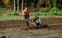 Pengzhou, Cina: Campo d'aratura del coltivatore immagini stock