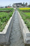 Pengzhou, Cina: Canale di irrigazione sull'azienda agricola Fotografie Stock