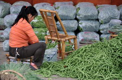 Pengzhou, Cina: Donna che insacca i fagioli verdi Fotografia Stock