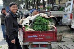 pengzhou för marknad för porslinco-bonde op royaltyfri bild