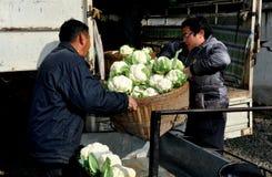 Pengzhou Kina: Bönder med blomkålen Royaltyfri Bild