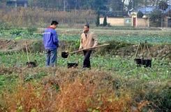 Pengzhou Kina: Bönder som bevattnar växter Arkivbild
