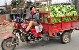 Pengzhou Kina: Barn bemannar körning åker lastbil Arkivfoto