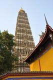 pengzhou pagoda фарфора длиннее xing Стоковое фото RF