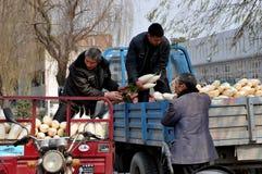 Pengzhou, porcellana: Agricoltori che caricano i ravanelli bianchi Fotografia Stock Libera da Diritti