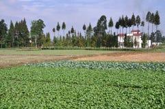 pengzhou sichuan καλλιεργήσιμων εδα&ph Στοκ φωτογραφία με δικαίωμα ελεύθερης χρήσης