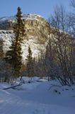 Penhasco do inverno Imagem de Stock Royalty Free