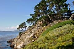 Penhascos, árvores de Cypress e oceano, Carmel foto de stock