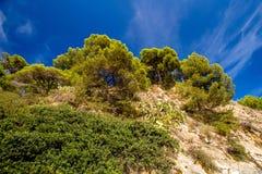 Penhascos acima da praia central em Lloret de Mar Imagens de Stock