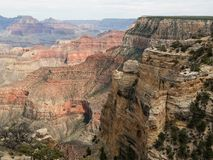 Penhascos completos de Grand Canyon no Arizona Foto de Stock