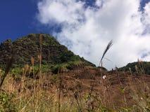 Penhascos da costa do Na Pali na ilha de Kauai, Havaí - fuga de Kalalau Fotos de Stock Royalty Free