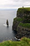 Penhascos de Moher, Ireland Fotos de Stock Royalty Free