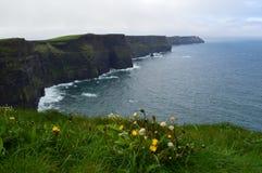 Penhascos de Mohr, Irlanda imagens de stock